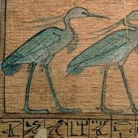 火の鳥  ― Bennu ― S.J.D. Ben Bruce Blakeney 頌 ―