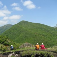 ツツジが見事な荒山・鍋割山