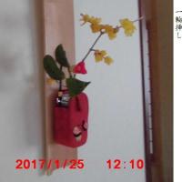 1月26日(木)