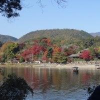 紅葉満喫 「松尾~嵐山」散策会