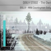 DiRT Rally オーナーズクラブ(MINI Countryman スウェーデン)