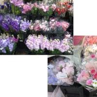 お部屋に花を飾りましょう(^o^)/