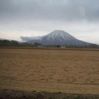 北海道社員旅行  室温データ