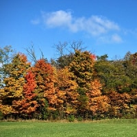 秋の色・天空の砦