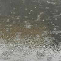 雨のウォーク