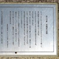 玉川上水に親しむ会・第245回例会~柴崎分水開渠とユーミンの歌碑