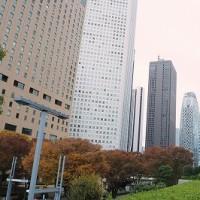 新宿西口公園 7