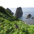 海は 島・岩 見事な自然美 島武意海岸