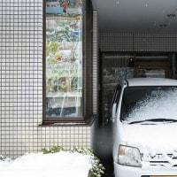 ちょっとの雪で降参のおいらと京都