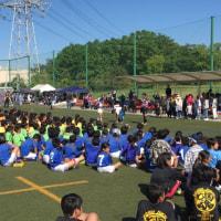 Tokyo cup.