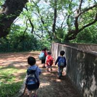 夢見ヶ崎動物公園で、ポカポカいい気持ち