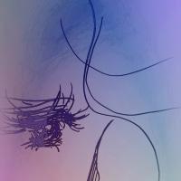 龍の薔薇2.69