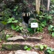 和歌山の方へ 9