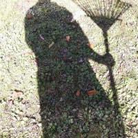 小野なな nanaono  買出しと庭掃除 かっこめ熊手