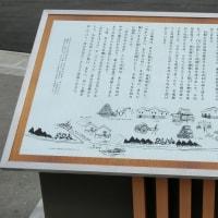 新緑の季節2017 ~ 長井の白つつじ ~