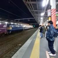 直流電気機関車 EF65-2119【武蔵野線:西国分寺駅】 2017.4.12(1)撮り鉄 車両鉄
