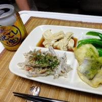 ハモの天婦羅と宇和島のジャコカツの夕食