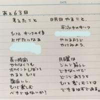 スイムフェスタまで63日!