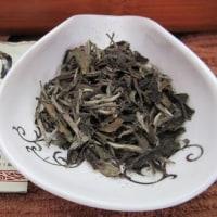 宝玉園の白茶