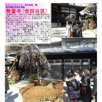 花巡り 「梅-195] 無量寺(世田谷区)