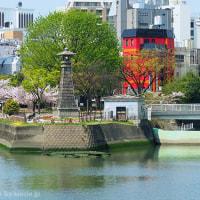 清流公園の春景色と撮影の意味