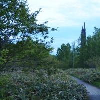 野幌森林公園ふれあいコースへ