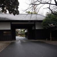 目黒~五反田ウォーキング