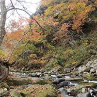 平成28年10月23日(日) 紅葉狩りドライブ♪