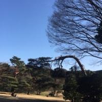 五段審査@明治神宮 201702