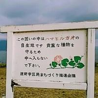 びわ湖勝手気まま歩き20周-4回目スタート!