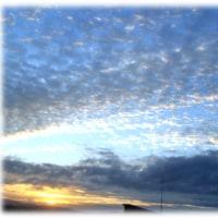 秋の空(^^♪一昨日は「空を見る日」 ひつじが群れでぷかぷかと泳いでいるように見える雲が…