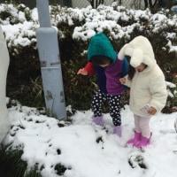 初雪とか、3歳児検診とか。