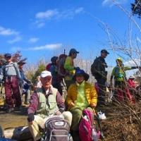 13 火山・丸山・大茶臼山(488・452・413m:安佐南区・西区)縦走登山  昼食タイム