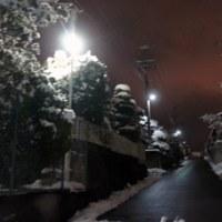 雪のお陰で・・・