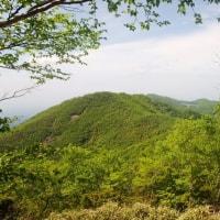ツツジ咲く赤城山を登る