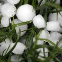 ロシア 卵サイズの巨大な雹で作物と車に甚大な被害