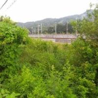 軽井沢駅 信越線・廃線跡。(「旧中山道」をゆく。第11日目。番外編)