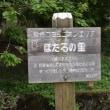 四季折々808  城山湖の麓の紫陽花の道1