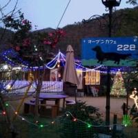 228さんのクリスマスイルミネーション
