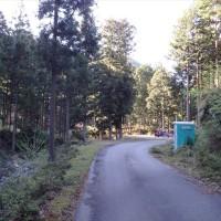 【高見山地】仁柿峠から局ヶ岳。