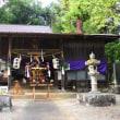 神社の土手に咲いていたヤマユリ