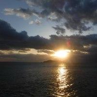 ヒラスズキ 上五島 2016 11月