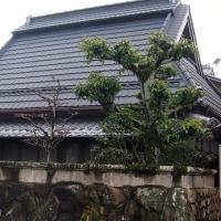 有馬川沿いの旧道を歩く  (曇り空なのに・・・)