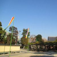 東小岩の善養寺に寄ってみました