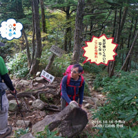 不安が的中した小秀山登山