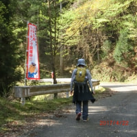 JR九州ウォーキング  新緑の英彦山を歩きました