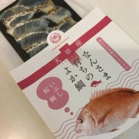 天草、長崎の魚