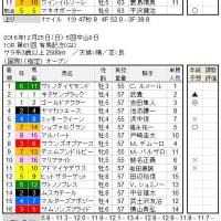 ■最終報告/2016Autumnシリーズ(鬼脚炸裂!!)