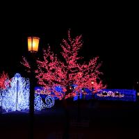 太田 北部運動公園のイルミ2016