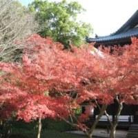 根来寺に行ってきました